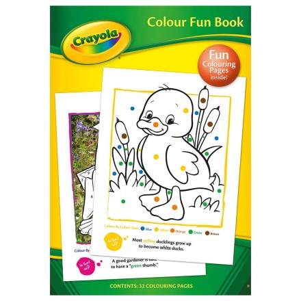 mry crayola colour fun book